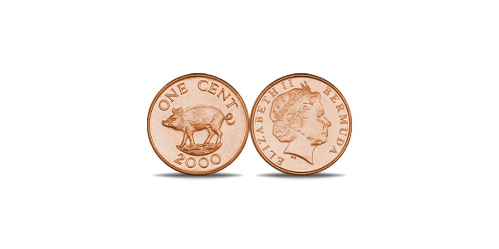 Bermudu cents ar cūku
