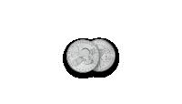 """Autentisku monētu komplekts """"Kosmosa iekarošana""""10"""
